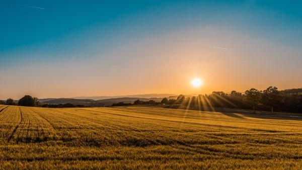 Terrain agricole investissement